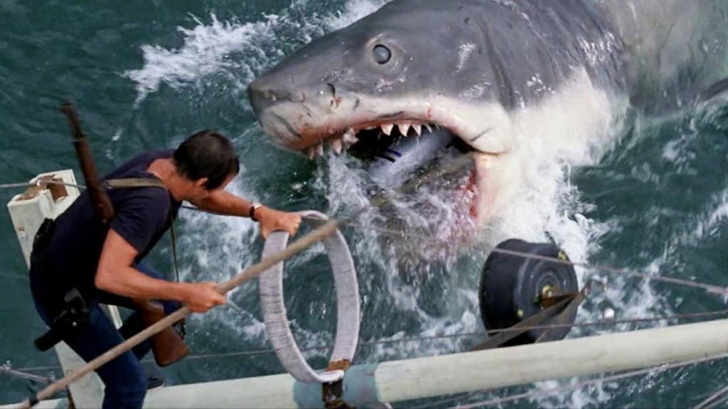 /home/tribu/public html/wp content/uploads/sites/14/2016/02/Jaws 1975