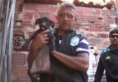 UIPA faz resgate de cachorrinha de apenas 4 meses (FOTO: Reprodução TV Jangadeiro)