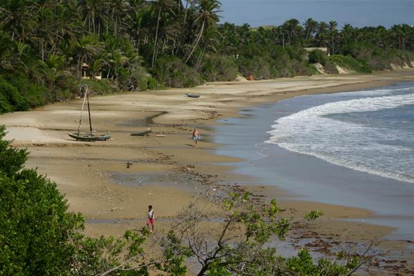 A praia da Baleia, localizada em Itapipoca, é tranquila e quase inabitada. Ao seu lado, ainda há outras praias semelhantes, como Praia do Maceió e das Pedrinhas. Coqueiros e algas dão a predominância da cor verde ao local, quebrada pelo colorido das canoas (FOTO: Wikipedia)