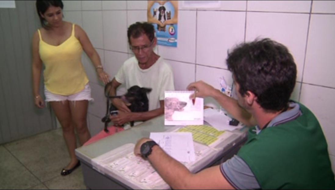 Fortaleza conta com nove postos de atendimento veterinário gratuito