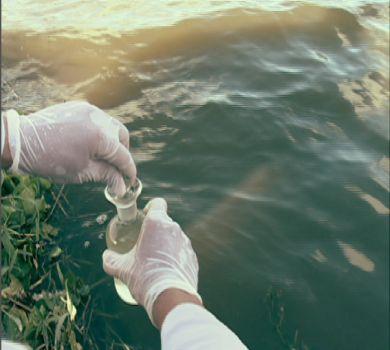 Lagoas de Fortaleza são avaliadas por secretaria de Meio Ambiente