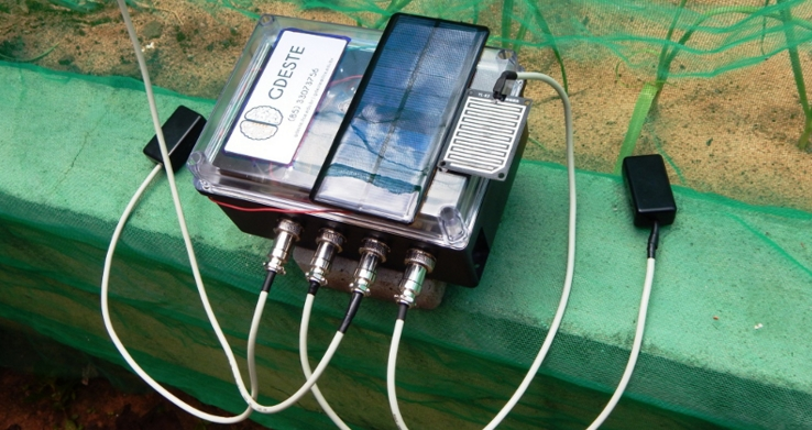 A rede irá monitorar temperatura, umidade relativa do ar e do solo (FOTO: Divulgação)