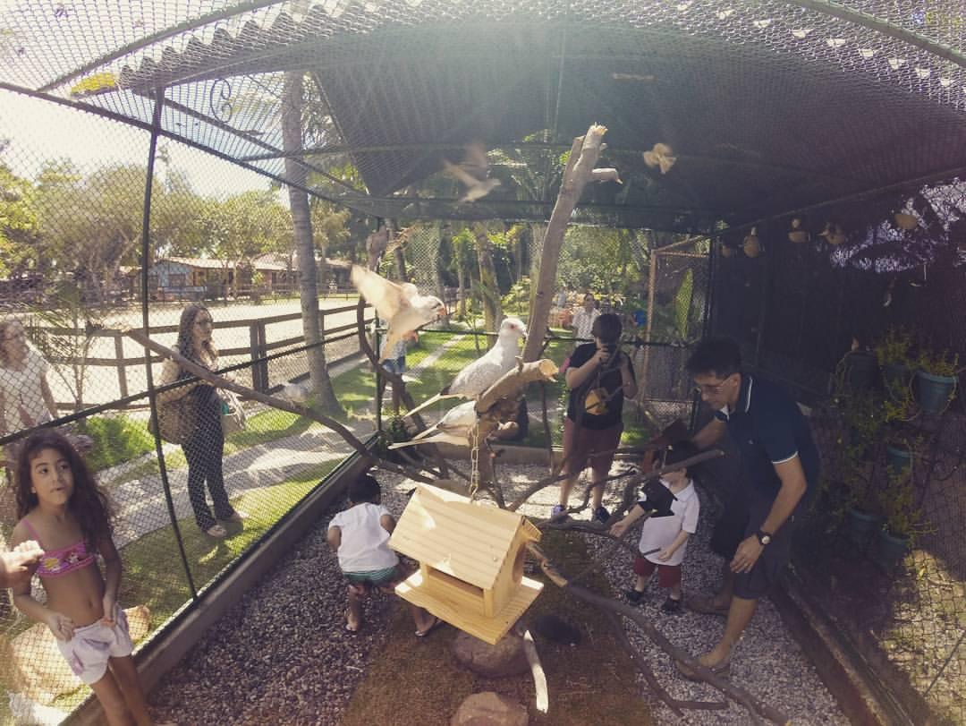 O zoológio é uma das grandes atrações. (FOTO: divulgação)