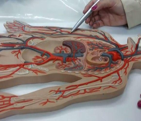 Dores nas pernas pode ser problema de circulação (FOTO: Reprodução TV Jangadeiro)